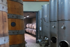 Michele_Satta_winery3